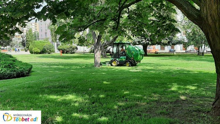 Folyamatosan vágják a füvet városszerte – Intenzív a fűnövekedés térségünkben is