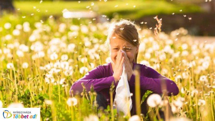 Fokozódó allergiás tüneteket hozhat az újabb hőhullám – Tartós terhelés alatt szervezetünk