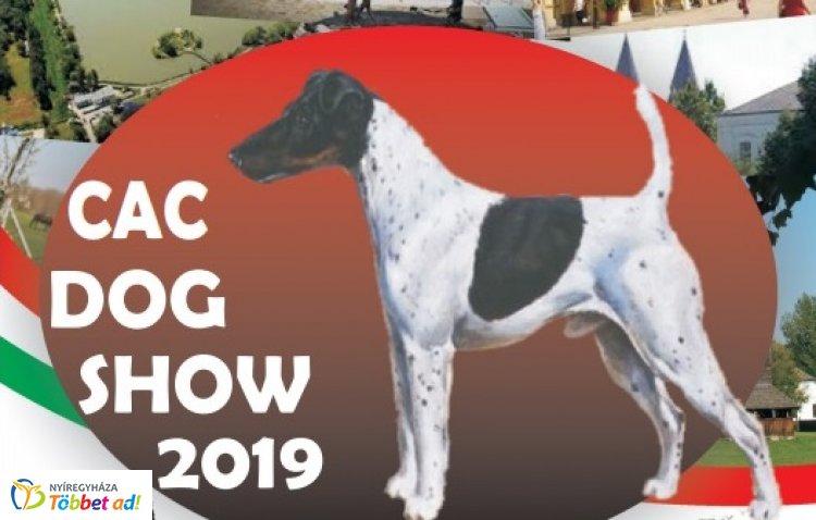 CAC Kutyakiállítás Nyíregyházán, a Kertvárosi Piac területén