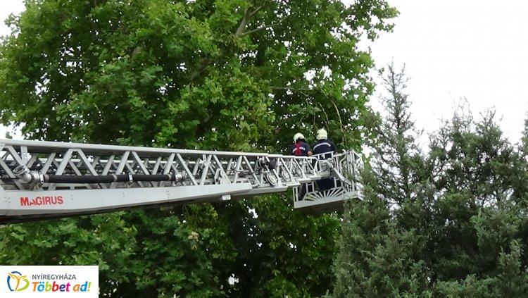Lehasadt faághoz riasztották a katasztrófavédelem munkatársait a Lengyel utcába