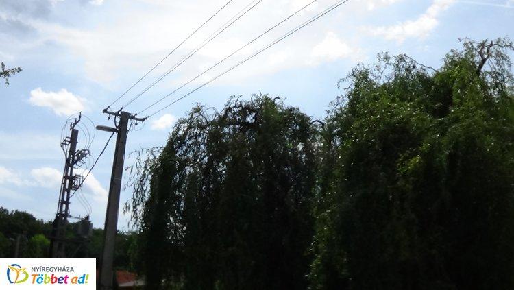 A Sikló utcán szerdán is áramszünet lesz - A gallyak eltávolítását végzik
