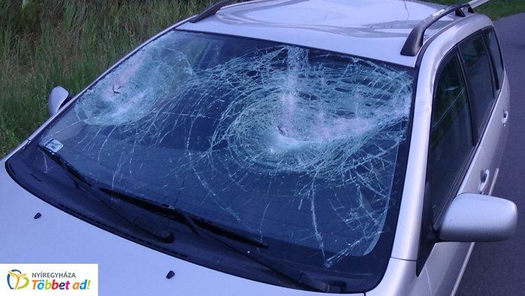 Baromfiláda repült le egy nyerges vontatóról - Betörte egy autó szélvédőjét