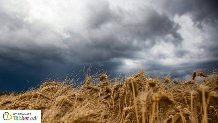 Néhány napon belül kiadós zápor jöhet – Ilyen időjárásra számíthatunk a héten