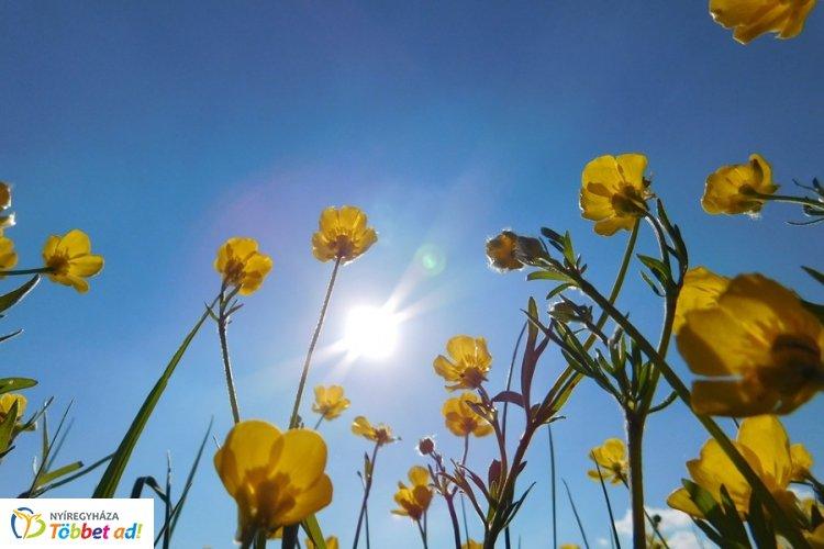 Napos idő lesz a hosszú hétvégén - Nappal 31 fok várható, de este se lesz 15-nél kevesebb