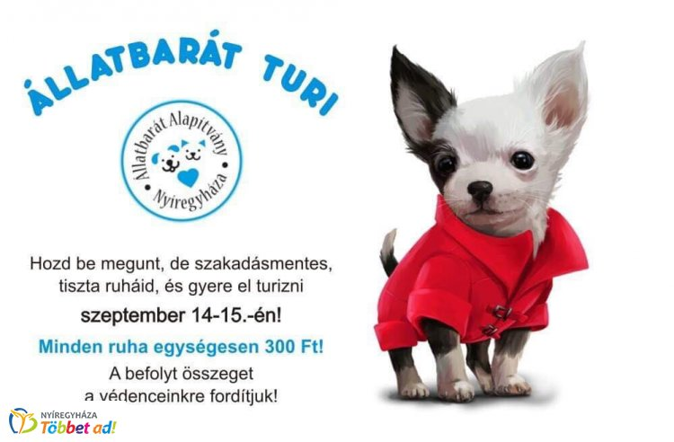 Ilyen még biztos nem volt Nyíregyházán - Állatbarát turi az Állatbarát Alapítvány lakóiért