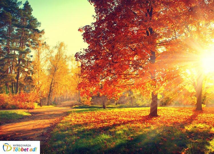 Itt a nagy őszi előrejelzés – Hirtelen érkezik a hűvös, esős idő