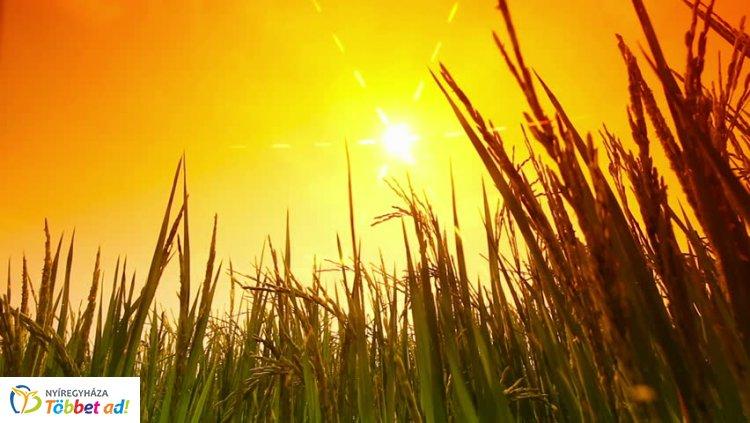 Napfényes idővel búcsúzik a nyár – 35 fok is lehet az utolsó nyári hétvégén