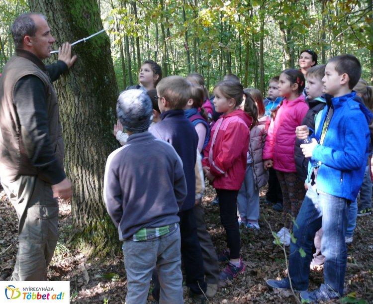 """""""Fedezd fel az erdőt az erdészekkel!"""" - ingyenes program a Sóstói-erdőben"""
