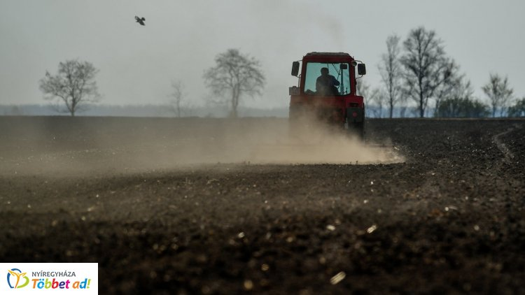 Kárenyhítési határidőkre hívja fel a figyelmet az agrártárca