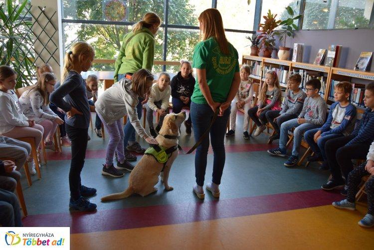 Segítőkutyák a könyvtárban – Különleges bemutatót tartottak az Állatok Világnapján
