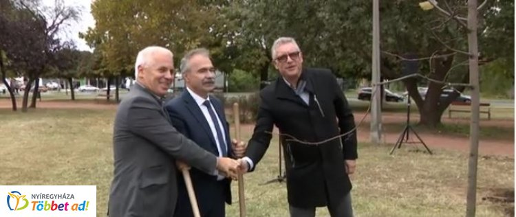 Hársfákkal gazdagodott a Széna tér – Az agrárminiszter és a polgármester közösen ültetett