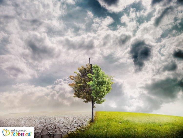 Global Climathon Day – Nyíregyháza is felveszi a harcot a légszennyezettséggel szemben!