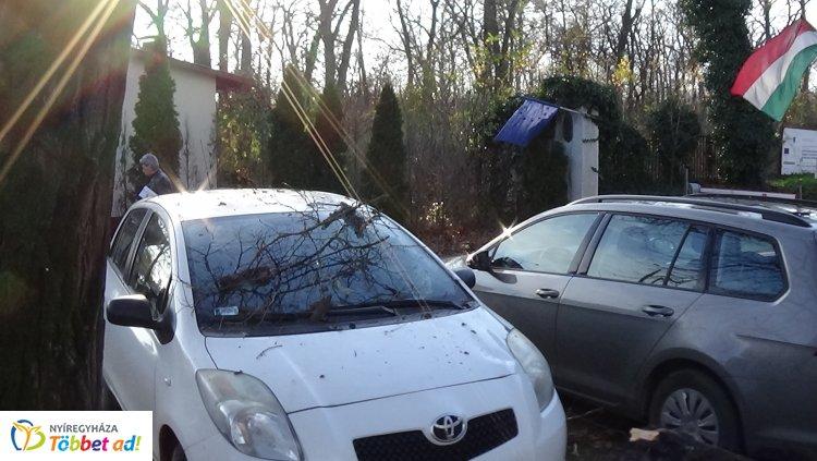 A Sóstói úti kórház bejáratánál dőlt parkoló autókra egy fa, jelentős az anyagi kár