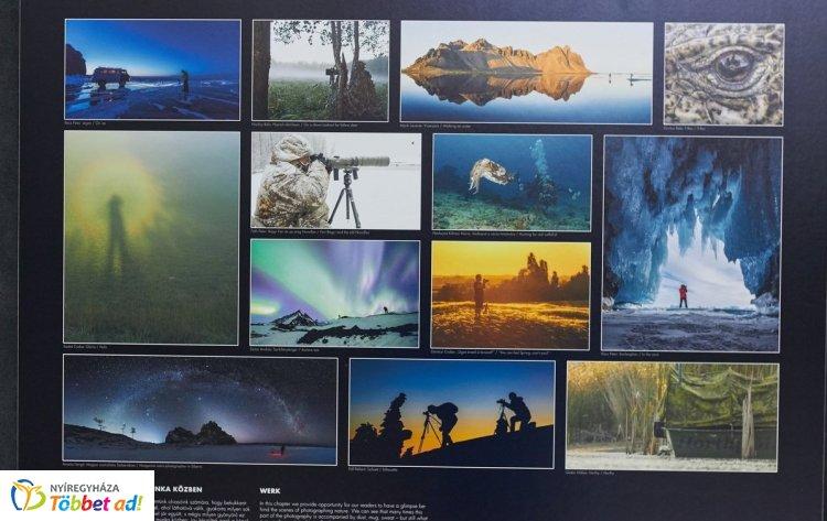 Magyarország és Közép-Európa legrangosabb természetfotós pályázatának képei a VMKK-ban
