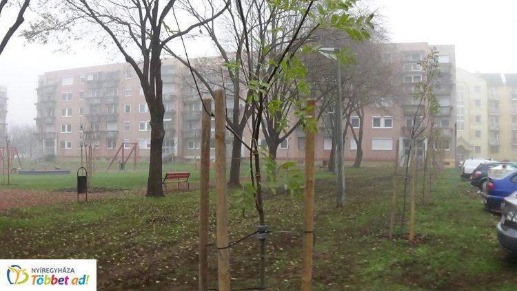Folytatódott a faültetés – 22 facsemete díszíti a Sarló utcai játszóteret