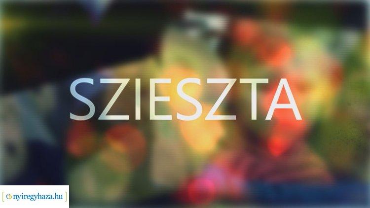 Mozdulj Nyíregyháza!, életmódváltás és harcművészet a Sziesztában