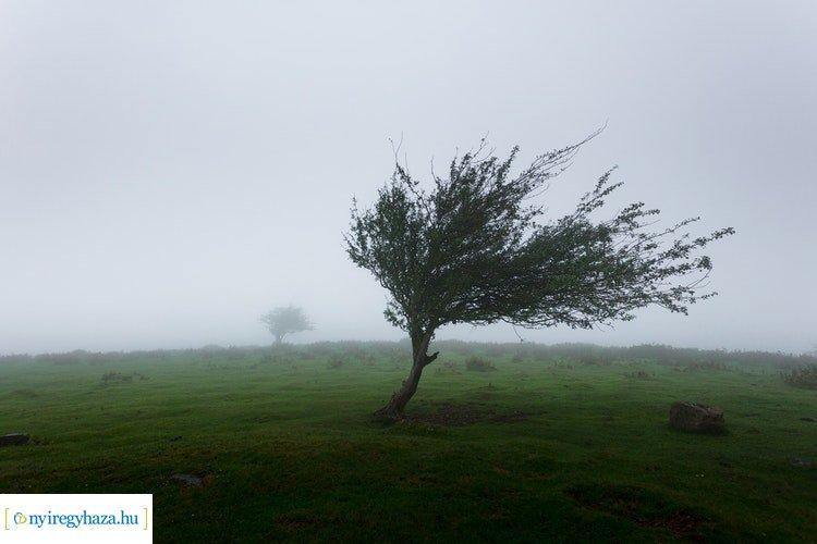 Országos Meteorológiai Szolgálat: szerdán is országszerte viharos szél várható