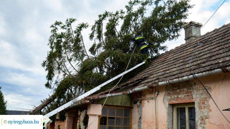 Fákat döntött ki, épületeket rongált meg a viharos szél országszerte
