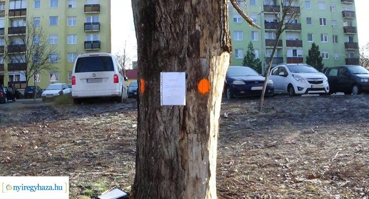 Figyelem! Február 20-án ne használják a Toldi utca 54/B. szám melletti parkolókat