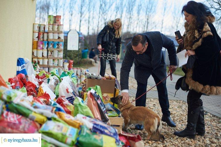 Több mint egy tonnányi tartós állateledelt kapott az Állatbarát Alapítvány csütörtökön