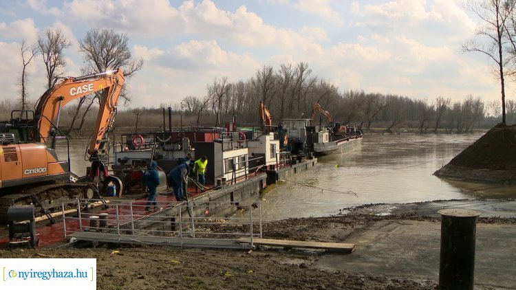Teljesen megtisztult a hulladéktól a Tisza egyik legszennyezettebb ártéri erdeje