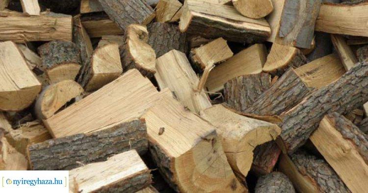 Véget ért a szociális tűzifaprogram a NYÍRERDŐ-nél – 157 településről igényeltek fát