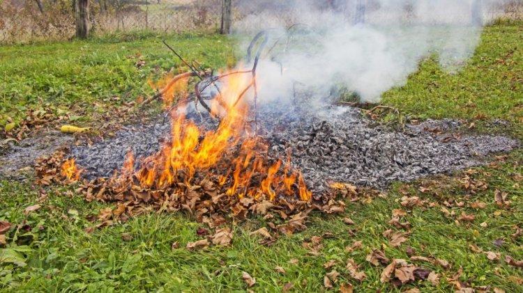 Katasztrófavédelem: április 1-től tilos az avar és kerti hulladék égetése