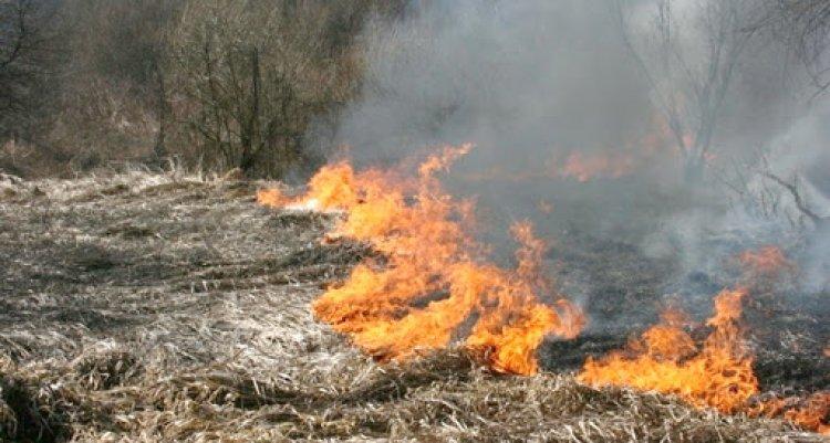 A szabadtéri tüzek megelőzhetők – Idén már hatezer riasztás érkezett