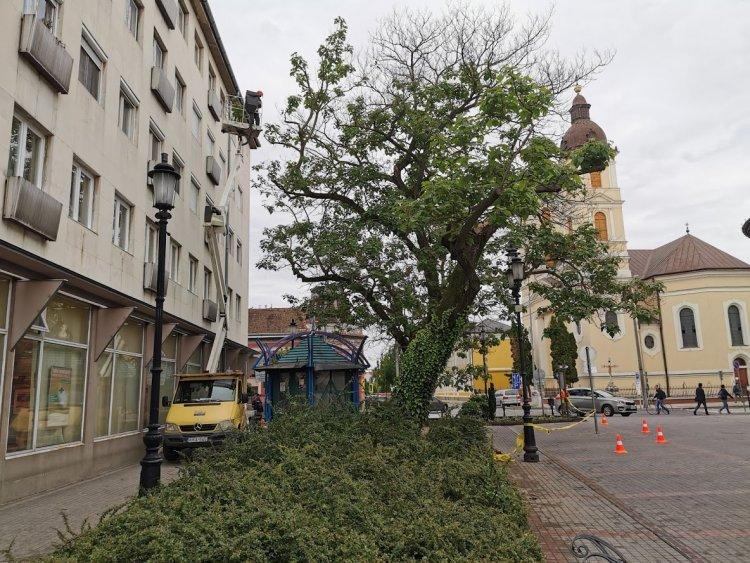 Gallyazási munkálatok a Posta előtt - A gyalogosforgalom korlátozott