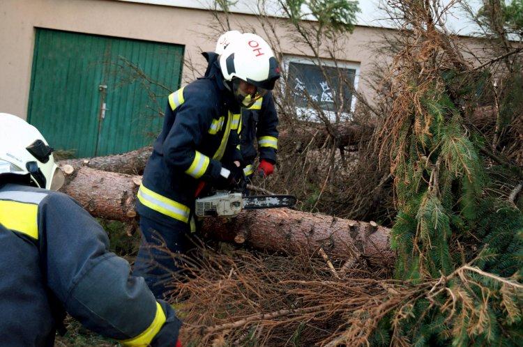 Sérült fák, leszakadt ágak miatt riasztották a megye tűzoltóit