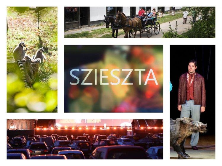 Szieszta – Pezseg az élet az állatparkban, 50 éves a múzeumfalu, autósmozi Nyíregyházán