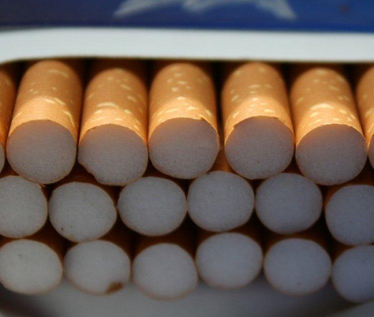 Cigarettacsempészet vasúton és közúton: 15 ezer doboz csempészett cigarettára bukkantak