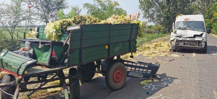 Lovaskocsival ütközött egy jármű Újfehértónál, az állat elpusztult, ketten megsérültek