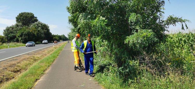 Nyíregyháza és Nyírpazony között végeznek munkálatokat a Magyar Közút dolgozói