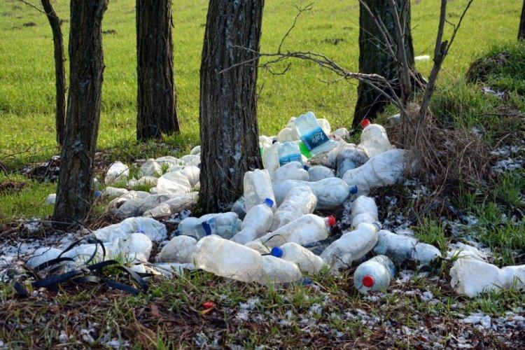 Sokan rakják le az illegális hulladékukat az erdő szélére és a főutak mentén