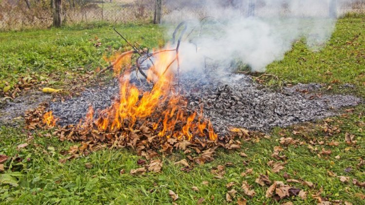 2020 áprilisától Nyíregyházán a kerti avar és hulladék égetése tilos!