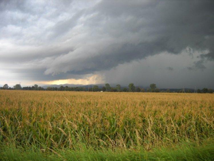 Zivatarokkal búcsúzik a nyár: késő délutántól esős időjárás várható
