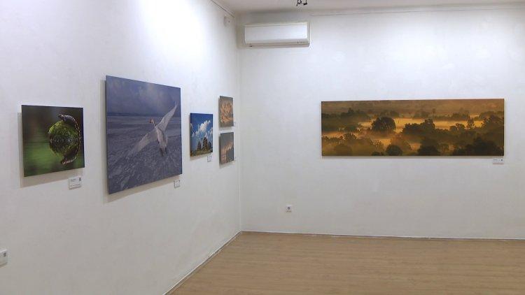 """Zsila-fotók a galériában: """"Az én műtermem a természet"""""""