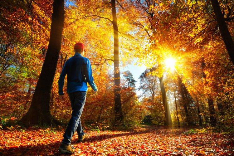 Délután megkezdődik a csillagászati ősz és némi lehűlés is érkezik a hétvégére