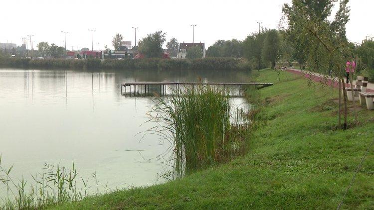 Haltelepítés a Bujtoson – 1400 kilogramm ponty került a tóba szerda reggel