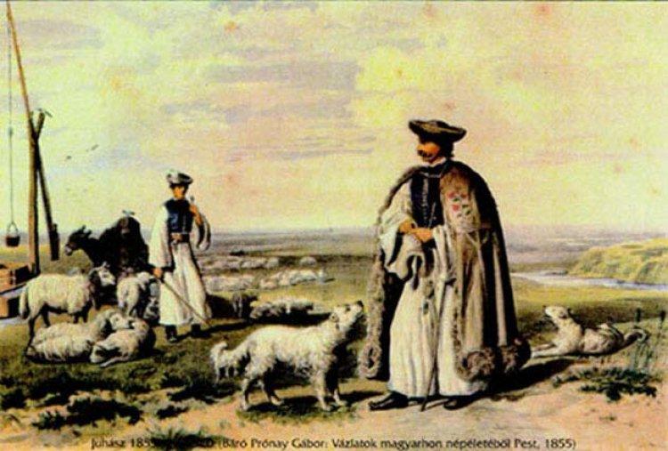 Pásztorforgatag a Múzeumfaluban  - Hamisítatlan őszi vásári hangulat várja az érdeklődőket