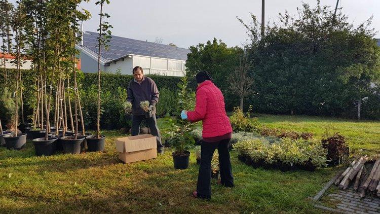 Ültess egy fát a holnapért! – Átadásra kerültek a növények