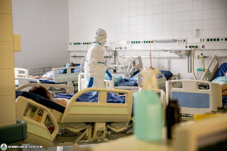 Semmelweis Egyetem: hazamehetett az első, magyar gyártású remdesivirrel kezelt beteg