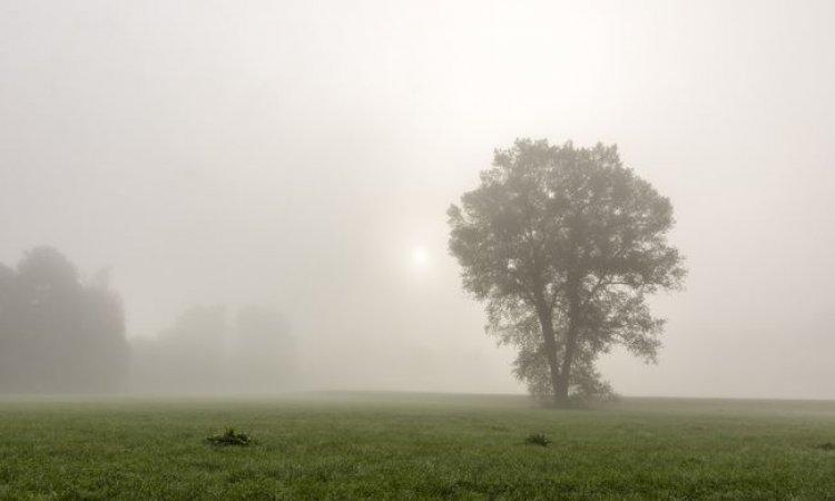 Országos Meteorológiai Szolgálat: sűrű köd teszi kellemetlenné a napot