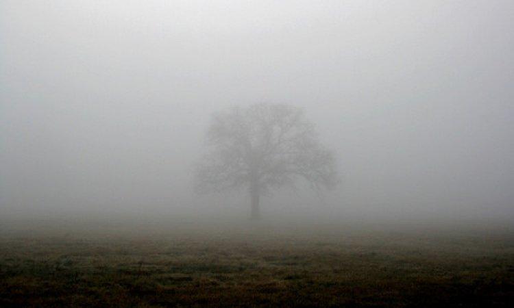 Országos Meteorológiai Szolgálat: ma sem szabadulunk a sűrű ködtől