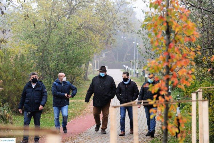 Folytatódik a faültetés Sóstón – Több mint száz fát ültettek az elmúlt napokban