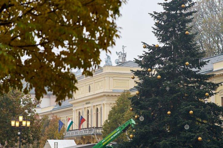 Elkezdték feldíszíteni Nyíregyháza karácsonyfáját - 3 kilométernyi fényfüzér kerül rá