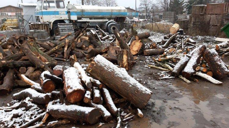 December elsejétől osztják a szociális tűzifát Nyíregyházán