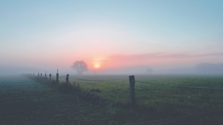 Országos Meteorológiai Szolgálat: az ország több része is ködfátyolba borul