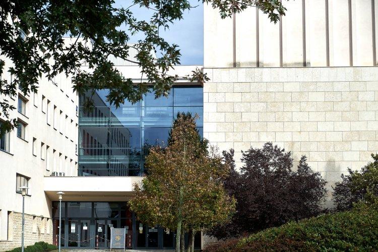 Környezetvédelmi együttműködés – Az egyetem, egy általános iskola és a NYÍRVV között
